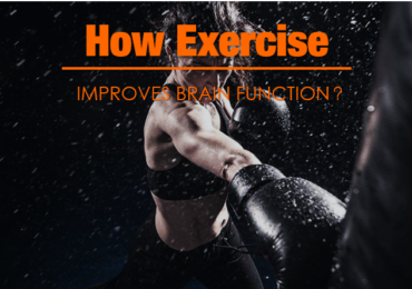 How Exercise Improves Brain Function?