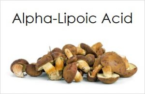Alpha-lipoic Acid found in mushrooms